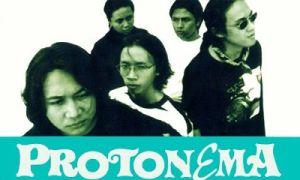 protonema